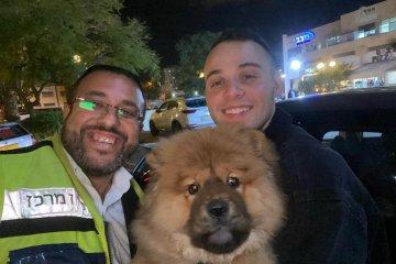 כלב שננעל ברכב לעיני בעליו ברחובות חולץ בשלום על ידי כונן ידידים