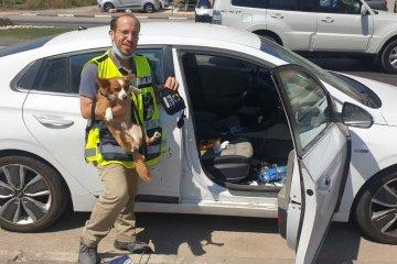 עפולה: כלב ננעל ברכב לעיני בעליו • כונן ידידים חילץ אותו בשלום