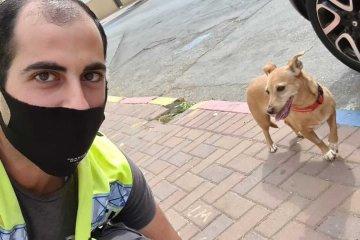 צפו: כלב ננעל ברכב באזור, ליאור לוי מחולון נרתם לעזרה (וידאו)