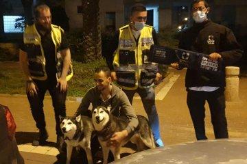 אשדוד: זוג כלבים ננעל בשגגה ברכב וחולץ במהירות על ידי כונני ידידים