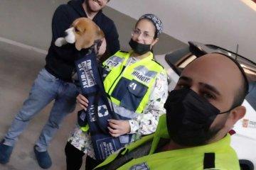 כפר יונה: כלב ננעל ברכב לבדו בצורה מסוכנת, כונני ידידים הוזעקו לחלצו • הכלב חולץ במהירות ובשלום