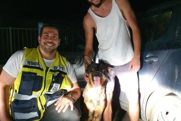 כפר אדומים: כלב ננעל ברכב לבדו, כונן ידידים חילץ אותו במהירות ובשלום