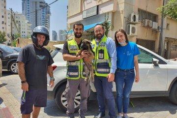 """רמת גן: כלב ננעל ברכב בשגגה מחוץ לארגון 'תנו לחיות לחיות', כונני ידידים חילצו אותו בשלום • """"אנחנו בידידים נותנים לחיות לחיות ומבקשים לא להשאיר כלב ברכב לבד מחשש לנעילה"""""""