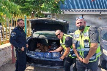 """באר שבע: מתנדבי ידידים חילצו בשלום כלב שננעל לבדו ברכב • עוברי אורח שהבחינו בכלב, הזעיקו את מתנדבי ידידים • """"הכלב היה נעול יותר משעה בחום. הוא היה תשוש נורא"""""""