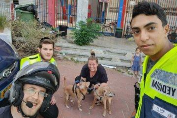 """רמת גן: כלבים ננעלו ברכב לבדם, כונני ידידים חילצו אותם במהירות ובשלום • """"הבעלים התרגשו והודו לנו מאוד על הסיוע המהיר"""""""