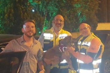 """ראשל""""צ: בחצות הלילה כונני ידידים הוזעקו לחלץ כלב שננעל לבדו ברכב בשגגה • הכלב חולץ במהירות ובשלום"""