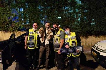 ראשון לציון: זוג כלבים ננעל בשגגה ברכב וחולץ בשלום על ידי כונני ידידים לאחר מאמצים ועם הרבה נחישות